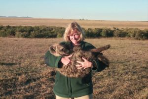 Image of Kay Holekamp holding a hyena in the wild