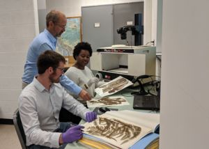 Image of Alan Prather and members of his lab preparing plant specimens for digitization